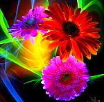 Цветотерапия