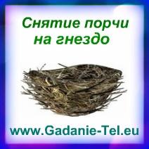 Снятие порчи на гнездо